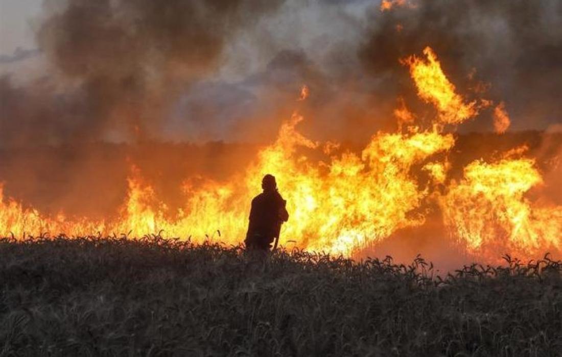 """اندلاع حريق في """"غلاف غزة"""" (أرشيف)"""