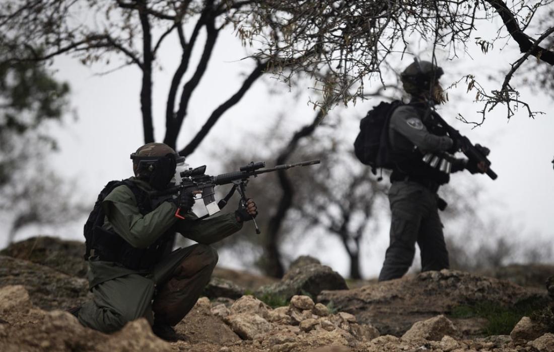 قوات الاحتلال تعتقل 8 شبان في اللد المحتلة