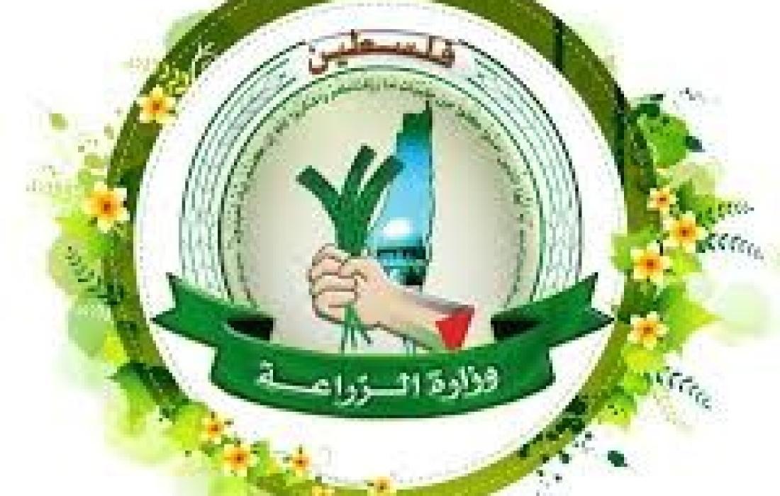 وزارة الزراعة غزة.jpg