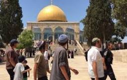 اقتحام المستوطنين للمسجد الاقصى.jpg