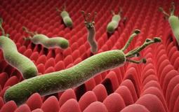 ما هي البكتيريا الحلزونية وطرق علاجها؟.jpeg