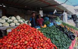 الخضروات في قطاع غزة.jpeg
