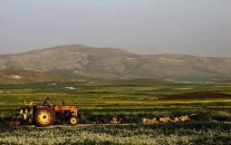 مناطق الاغوار الفلسطينية