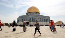 جولة في أرجاء وباحات القدس المحتلة