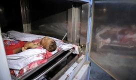 شهداء في غزة.jpg