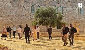 مستوطنون يقتحمون القدس (2).jpeg