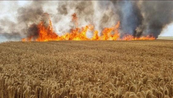 حرائق في مستوطنات غلاف غزة بالونات حارقة